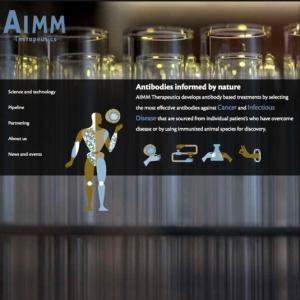 aimm-1
